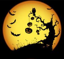 TPLF's Post Halloween Drama
